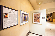 Grandest Ride photographs installed for six months at sky harbor airport