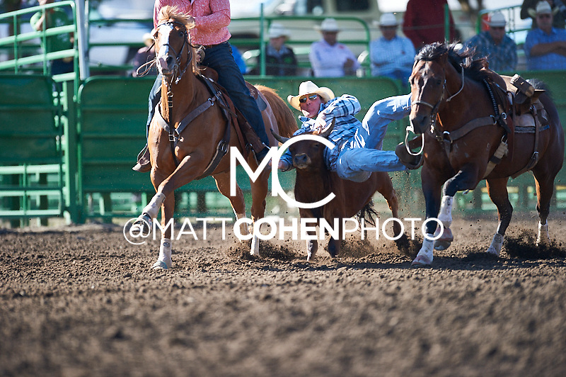 Steer wrestler Coleman Kohorst of Okotoks, AB competes at the Livermore Rodeo in Livermore, CA<br /> <br /> <br /> UNEDITED LOW-RES PREVIEW<br /> <br /> <br /> File shown may be an unedited low resolution version used as a proof only. All prints are 100% guaranteed for quality. Sizes 8x10+ come with a version for personal social media. I am currently not selling downloads for commercial/brand use.
