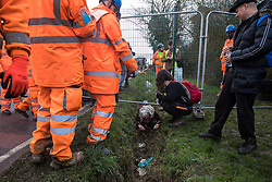 Harefield, UK. 8 February, 2020. HS2 engineers look on as an elderly activist crawls through a ditch after being denied access at the gate to an area of Harvil Road fenced off in order to carry out tree felling works for the high-speed rail project. The activists were successful in preventing any of the scheduled tree felling by HS2 and after an intervention by a police officer all tree felling and strimming work has now been cancelled for the weekend.