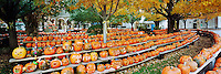Gazebo and Jack o Lanterns at Central Square, Keene Pumpkin Festival