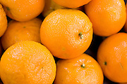 A pile of fresh, ripe oranges