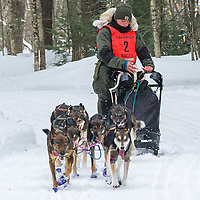 While the team stays on course, the gentle hand of the musher checks on the wounded dog in the sled.