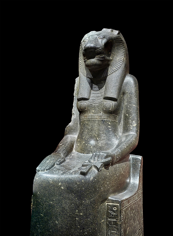"""Ancient Egyptian statue of goddess Sekhmet, grandodiorite, New Kingdom, 18th & 20thDynasty (1390-1150 BC), Thebes. Egyptian Museum, Turin. black background.<br /> <br /> In this statue of Sekhmet the goddess is called """"mistress of Shenut"""" possibly linking her to the lioness goddess Repyt of Anthribis.  Sekhmet, """"the Powerful One"""" was a fearsome goddess symbolised by her lioness head. Daughter of the sun she personifies the disk of the world during the day. Sekhmet is the angry manifestation of Hathor inflicting the scourges of summer heat, famine and illness which is why the goddess needed to be exorcised every day. Drovetti Collection. C 248 .<br /> <br /> If you prefer to buy from our ALAMY PHOTO LIBRARY  Collection visit : https://www.alamy.com/portfolio/paul-williams-funkystock/ancient-egyptian-art-artefacts.html  . Type -   Turin   - into the LOWER SEARCH WITHIN GALLERY box. Refine search by adding background colour, subject etc<br /> <br /> Visit our ANCIENT WORLD PHOTO COLLECTIONS for more photos to download or buy as wall art prints https://funkystock.photoshelter.com/gallery-collection/Ancient-World-Art-Antiquities-Historic-Sites-Pictures-Images-of/C00006u26yqSkDOM"""