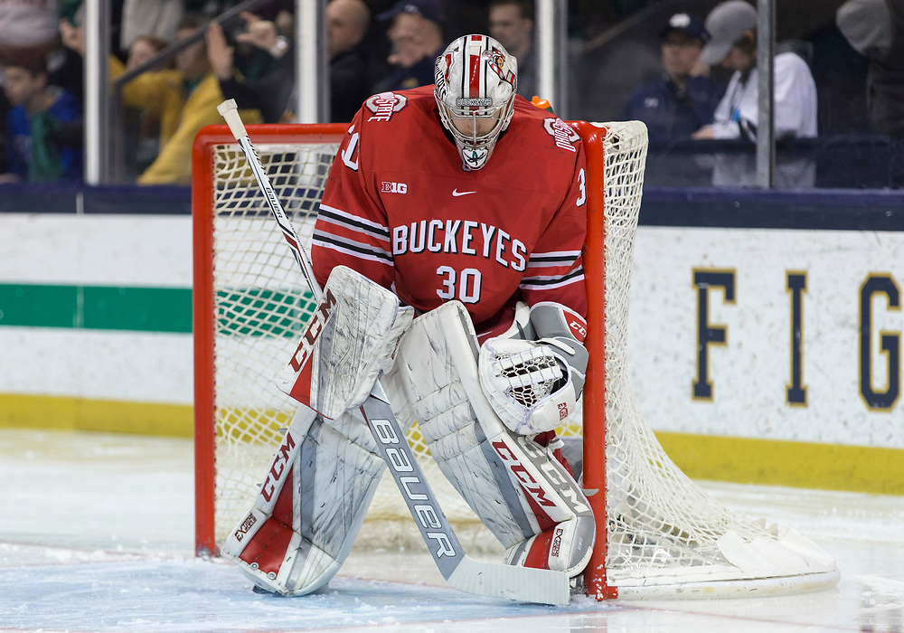 March 17, 2018:  Ohio State goaltender Sean Romeo (30) during NCAA Hockey game action between the Notre Dame Fighting Irish and the Ohio State Buckeyes at Compton Family Ice Arena in South Bend, Indiana.  Notre Dame defeated Ohio State 3-2 in overtime.  John Mersits/CSM
