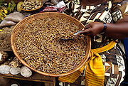 Seller Prossy Kasule in stall no. 68 of the Nakasero Market offers roasted and salted grasshoppers for sale, Kampala, Uganda. Image from the book project Man Eating Bugs: The Art and Science of Eating Insects.