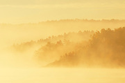 Fog along the Vermillion River at sunrise<br /> Whitefish<br /> Ontario<br /> Canada