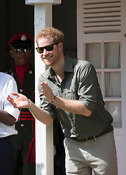 Prince Harry during a visit to the Botanic Gardens in Kingstown, Saint Vincent and the Grenadines, during the second leg of his Caribbean tour.