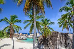 Spring Bay, Sandstrand mit Palmen und Felsblöcke bei The Baths, Spring Bay, Sandy Beach with palm tree and boulder by The Baths, Spring Bay by The Baths, Virgin Gorda Island, Britische Jungferninsel, Karibik, Karibisches Meer, British Virgin Islands, BVI, Caribbean Sea