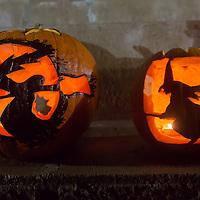Halloween Festival in Budapest, Hungary on October 26, 2013. ATTILA VOLGYI