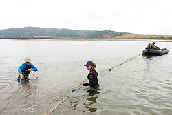 Setting Up Nets - Elkhorn Slough