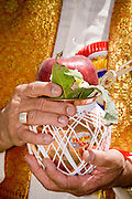 18 MAY 2008 -- MARICOPA, AZ: An apple used as an offering to a deity during the dedication of a new Hindu temple in Maricopa, AZ, Sunday. More than 3,000 Hindus from Arizona, southern California and New Mexico came to Maricopa, a small town in the desert about 50 miles south of Phoenix, for the dedication of the Maha Ganapati Temple of Arizona. It is the first Hindu temple in Arizona designed according to ancient South Indian Hindu architectural guides. Craftsmen from India came to Maricopa to complete the interior details of the temple. The dedication ceremonies lasted three days.   Photo by Jack Kurtz / ZUMA Press