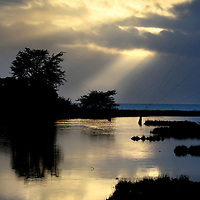 Late afternoon late is reflected in Corcoran Lagoon as the sun pierces thick cloud cover at the end of a rainy day. <br /> Photo by Shmuel Thaler <br /> shmuel_thaler@yahoo.com www.shmuelthaler.com