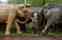 Joanna Lumley taking part The Elephant Family's CoExistence campaign  exhibition featuring elephant sculptures crossing The Mall  london  May 15, 2021,photo by Krisztian  Elek