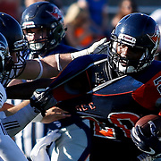 On Saturday, November 5, Dwayne Wood (4 white) on Fullerton College pulls the jersey of Derrick Hunt (20 blue) and tackles him to the ground in Costa Mesa, CA. Fullerton won with the final score of 35 to 14.<br /> <br />  Photograph taken by ©Mikailin Rae Perry, Sports Shooter Academy