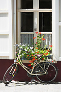 Traditional bicycle by hotel window with window flower planter in Walplein market square in Bruges, Belgium