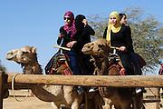 Kamel Reiten in der Wüste, arabische Mädchen auf Kamelen, Dromedare, Negev Camel Ranch bei Mamshit, Negev, Israel.|.Arab girls riding on camels, Negev Camel Ranch, Negev, Israel.