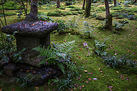 Gio-ji Temple Garden in Arashiyama Kyoto/  In recent years the temple was left unattended and fell in disrepair until an enterprising nun Chishoni moved in and tidied the grounds. Chishoni had been a geisha before taking the vows as a nun. Giyo-ji is a small hermitage now, and its main feature is its moss garden. A small stream crosses through the garden, allowing different types of moss to grow.  The garden is surrounded by a path.  On the northern side, there is a bamboo grove nicely integrated in the composition of the garden as a whole.  Giyo-ji is one of the best moss gardens in Kyoto, after the more famous Koke-dera.