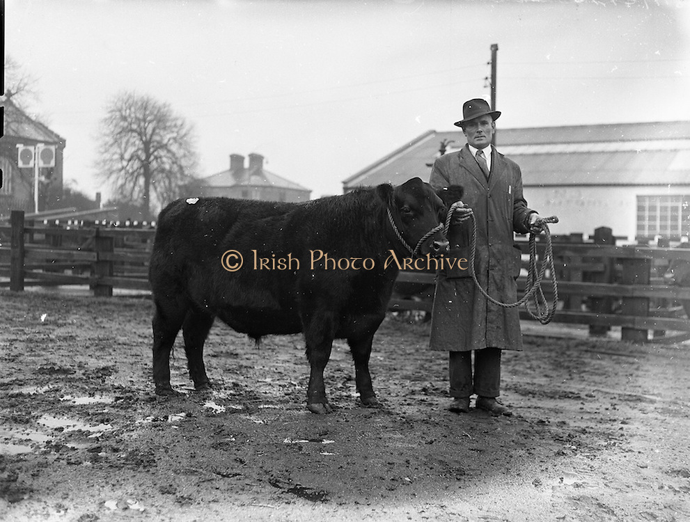 10/12/1957<br /> 12/10/1957<br /> 10December 1957<br /> Christmas Fat stock show at the Dublin Cattle Market.