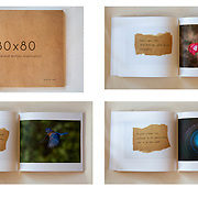 80X80 SOFTCOVER BOOK: An 8 x 9.5 in. softcover book containing all of the images, quotes, and haiku from the 80x80 Project. 94 pgs. PRICE: $47.00 plus shipping