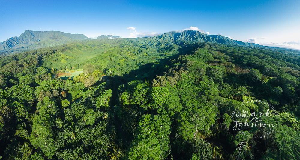 Aerial panorama photograph of Mts Waialeale & Makalea, Wailua, Kauai, Hawaii