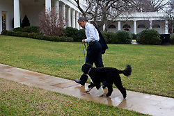 United States President Barack Obama walks to the White House with dog Bo in Washington, D.C;, USA on December 21, 2011, after visiting a Best Buy for some Christmas shopping in Alexandria, Virginia. Photo by Pete Souza/White House/ABACAPRESS.COM  | 306877_026 Washington Etats-Unis United States