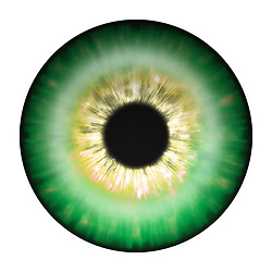 green and gold eye iris eye iris eye iris