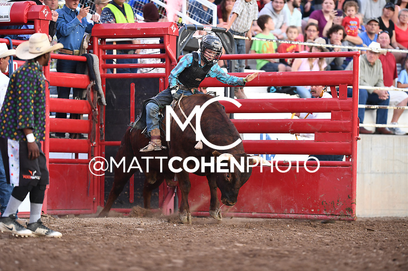 Mini bull riding, Nephi 2018<br /> <br /> <br /> UNEDITED LOW-RES PREVIEW<br /> <br /> File shown may be an unedited low resolution version used as a proof only. All prints are 100% guaranteed for quality. Sizes 8x10+ come with a version for personal social media. I am currently not selling downloads for commercial/brand use.