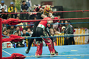 Male wrestlers in ring. Lucha Libre wrestling origniated in Mexico, but is popular in other latin Amercian countries, including in La Paz / El Alto, Bolivia. Male and female fighters participate in the theatrical staged fights to an adoring crowd of locals and foreigners alike.