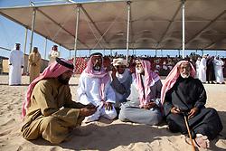 Dubai Camel Festival, Dubai, UAE, December 21, 2011. Photo by Silvia Baron / i-Images.