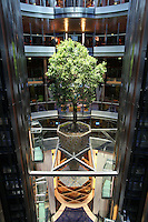Celebrity Equinox feature photos..The tree suspended in a lift atrium.