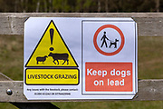 Macro close up of Livestock Grazing, Dogs on Lead Please  sign on fencepost, Sutton, Suffolk, England, UK