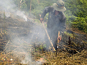 A Khmu ethnic minority man lights a fire to burn the dry vegetation on his field, Ban Non Boun Kang, Phongsaly province, Lao PDR. Swidden cultivation or 'hai' in Lao consists of cutting the natural vegetation, leaving it to dry and then burning it for temporary cropping of the land, the ash acting as a natural fertiliser. Shifting cultivation practices, although remarkably sustainable and adapted to their environment in the past, have come under increasing stress in recent decades and are now starting to be a major problem in Lao PDR, causing widespread deforestation and watershed degradation.