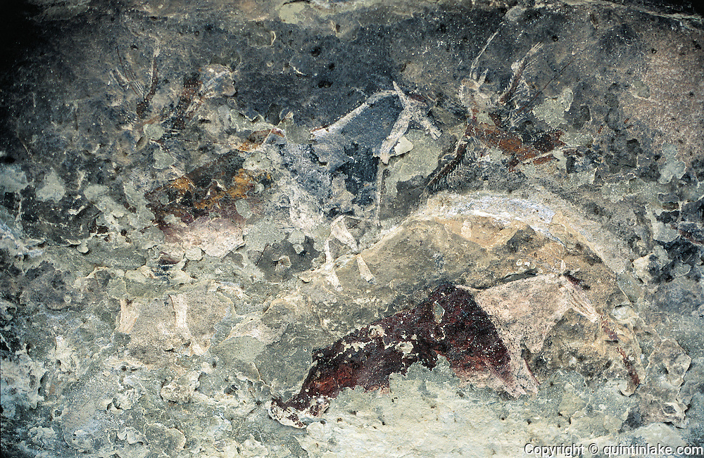 This rapidly decaying rock painting, which may be up to 2000 years old, depicts two elands (antelopes) and two half-animal, half-human shaman figures. Recorded during the Lesotho Rock Art Survey, 2000. Lesobeng Valley, Lesotho, 2000