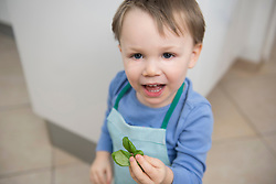 Boy holding leaf of basil in his hand