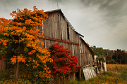 An old Sweet Valley barn in Autumn