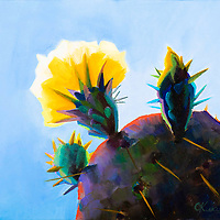 SOLD<br /> Soft blue skies and translucent cactus flowers are hallmarks of spring in the desert!<br /> 8 x 10, oil on canvas