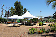 Great Park Farm and Food Lab Area