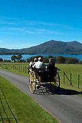 A traditional jaunting cart in Killarney, County Kerry, Ireland.<br /> <br /> Photo: Don MacMonagle <br /> e: info@macmonagle.com