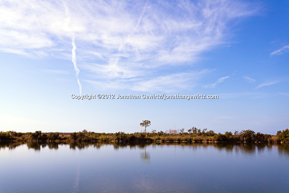 A tranquil morning on Sisal Pond in Everglades National Park, Florida. WATERMARKS WILL NOT APPEAR ON PRINTS OR LICENSED IMAGES.