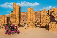 The Hadrien Gate roman avenue in Nabatean Petra Jordan middle east