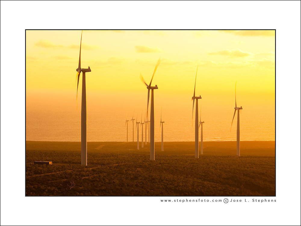 Windmills at wind farm producing clean electric energy, Coquimbo Region, Chile
