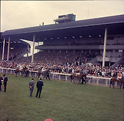 """30/06/1962 <br /> 06/30/1962<br /> 30 June 1962<br /> Irish Sweeps Derby at the Curragh Racecourse, Co. Kildare. general view of the  parade in front of the reserved enclosure for the Derby. The horses were shown and mounted on the course. Horses are (r-l): """"Arcor"""" N. Sellwood up; """"Tambourine II"""", R. Poincelet up; """"sir Pat"""" W. Berg up and """"Borghese"""", G. Bougoure up."""
