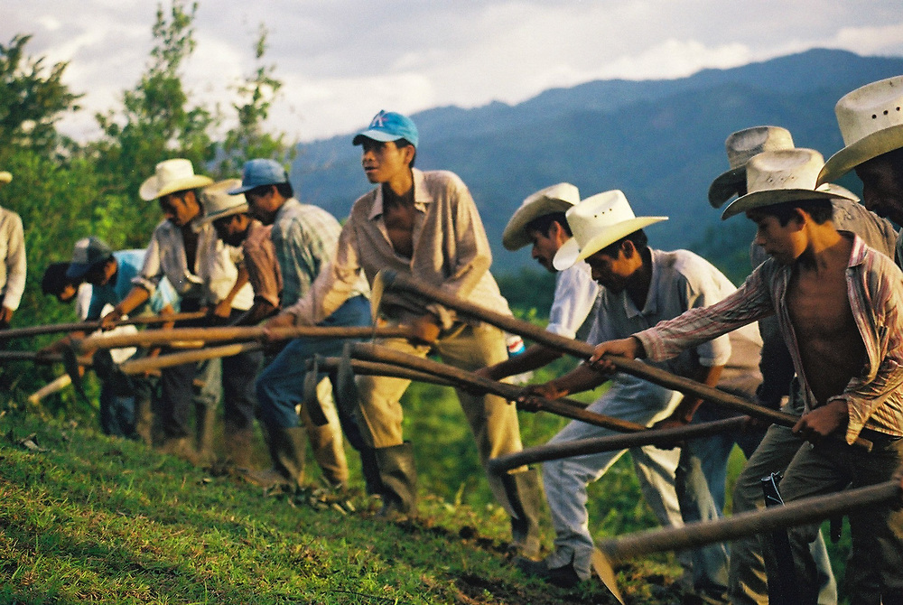 Indigenous Maya Chortí men work with hoes during the occupation of land to secure some farmland for the indigenous people.