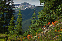 A view of the San Juan Mountains from Red Mountain Pass with Bear Mountain in the distance.  Colorado