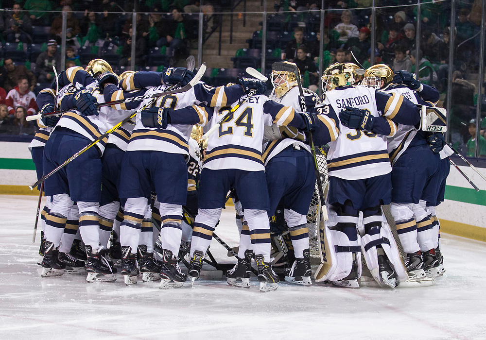 February 15, 2019:  Notre Dame players gather around the net prior to NCAA Hockey game action between the Wisconsin Badgers and the Notre Dame Fighting Irish at Compton Family Ice Arena in South Bend, Indiana.  Wisconsin defeated Notre Dame 2-1.  John Mersits/CSM