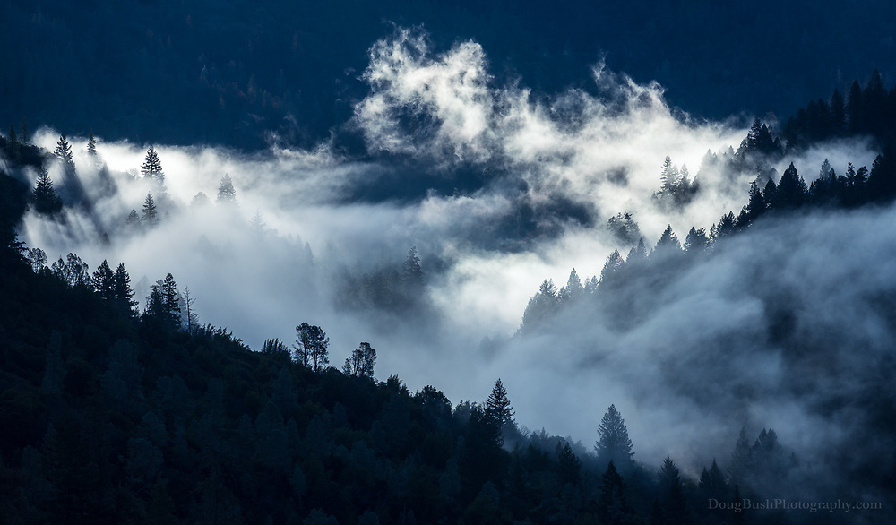 Mendocino National Forest.