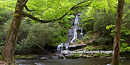 66745-04514 Panoramic of Tom Branch Falls at Deep Creek in spring, Great Smoky Mountains National Park, NC