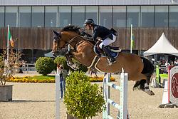 Appelen Jeroen, BEL, Oakingham Riyal<br /> Belgian Championship 7 years old horses<br /> SenTower Park - Opglabbeek 2020<br /> © Hippo Foto - Dirk Caremans<br />  13/09/2020