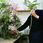 Eric Nunns, florist preparing a flower arrangement for a wedding taking place at Newby Hall estate and gardens, Ripon, North Yorkshire, UK