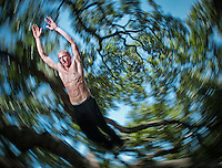 During a meetup with fellow practitioners of parkour, Mike Alvarez, 22, jumps between the branches of Treaty Oak in downtown Jacksonville, FL.